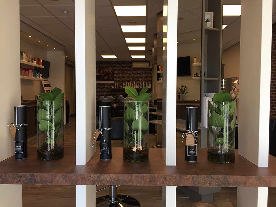 kapsalon-kapper_Hoorn-Blokker_Hairdesign_salon_C-04h